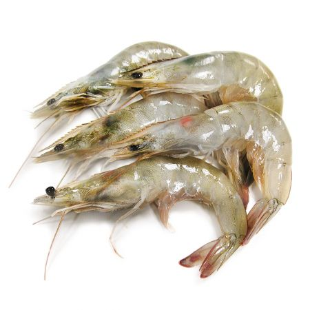 Shrimp 40-50 SHIRMP 30 40 H 0 FRZ