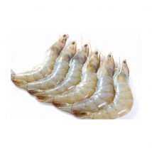 WHITE SHRIMP HEAD ON (SIZE 60-70 )