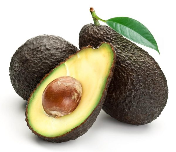 Hass Avocado Hass Avocado 600x519
